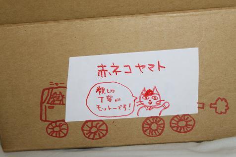 赤ネコヤマト